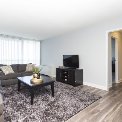 Living room in a one bedroom apartment at the Enclave in Silver Spring, MD