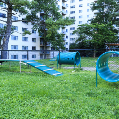 Luxury high rise apartment in Silver Spring MD with a dog park